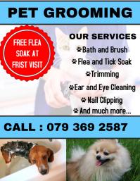 pet grooming flyer