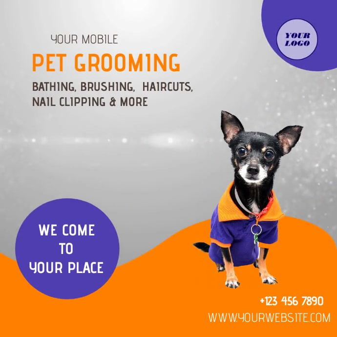 Pet Grooming Services Square (1:1) template