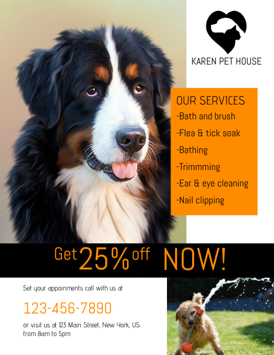 Pet Grooming Services Flyer template