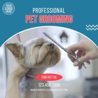Pet Grooming Services Video Ad Cuadrado (1:1) template