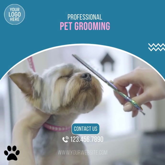 Pet Grooming Services Video Ad Square (1:1) template