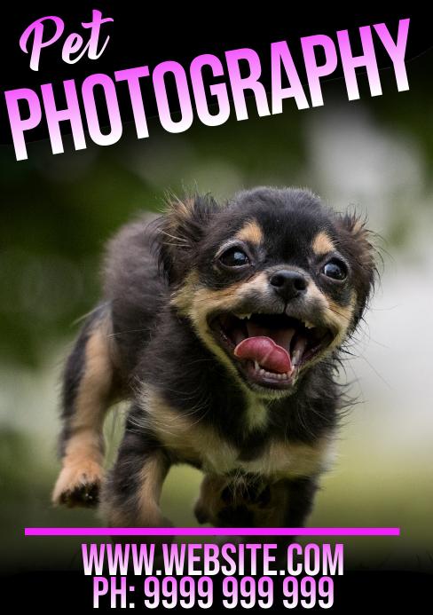 Pet Photography A5 template