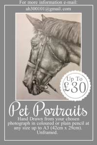 Pet Portraits Poster