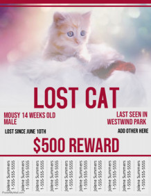 Customizable Design Templates For Lost Animal PosterMyWall - Lost pet flyer template