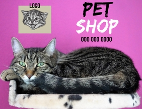 PET SHOP AD TEMPLATE