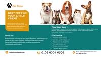 Pet Shop Business blog header post template