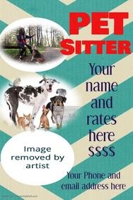 Pet Sitter Dog Walker Chevron Poster Flyer In