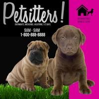 Pet Sitter Facebook Header