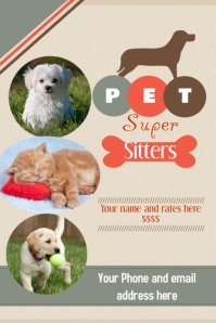 Pet Sitter Flyer Announcement Poster