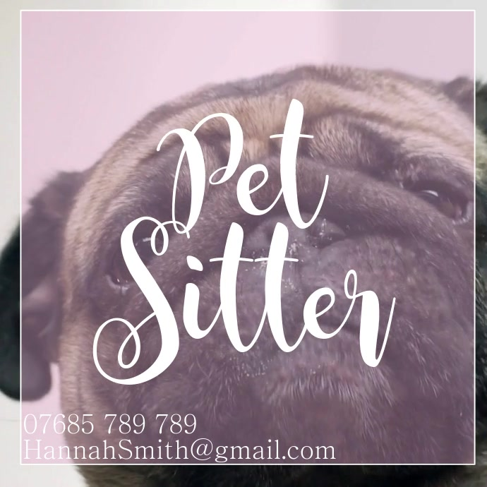Pet Sitter Instagram Advert template