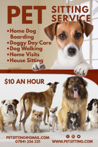 Pet Sitting Service Poster template