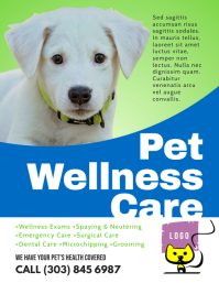 Pet Wellness Care Flyer