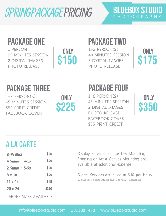 Photographer Price List Template in White Folheto (US Letter)