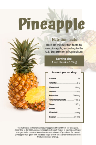 Pineapple Facts Infographic Template