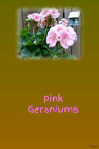 Pink Geraniums-garden event sale on postermywall
