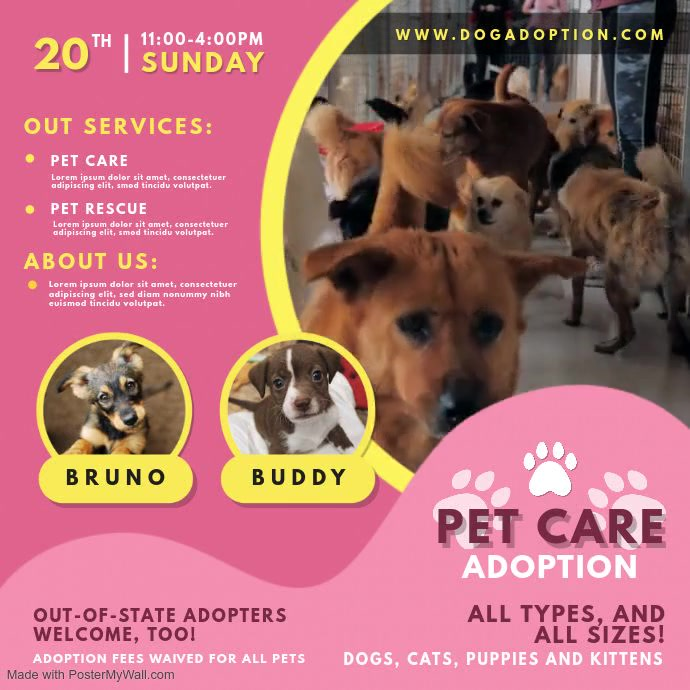 Pink Pet Adoption Center Video Ad