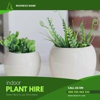 Plant Hire flyer Instagram video template