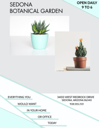 PLANTS SALE BOTANICAL