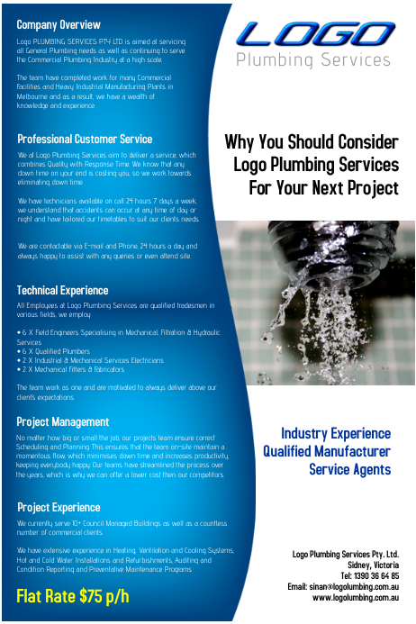 Plumbing Flyer Handyman Professional Services Template