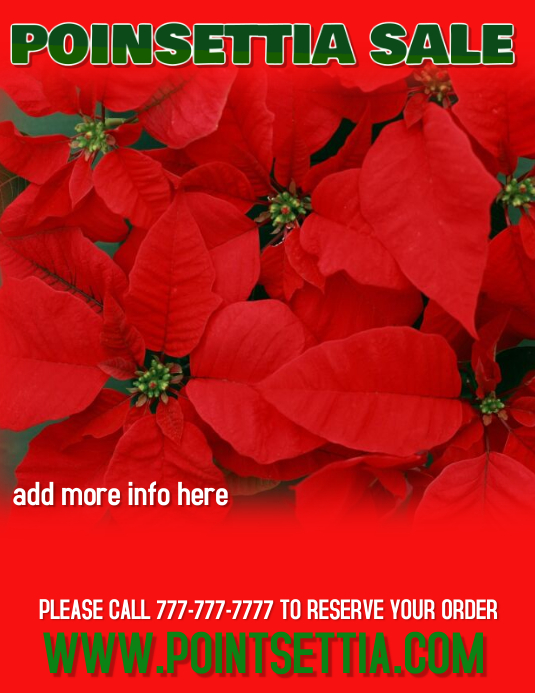 POINSETTIA CHRISTMAS SALE