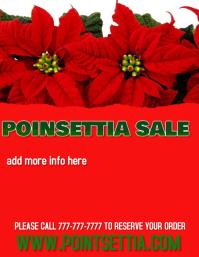POINSETTIA SALE CHRISTMAS RETAIL