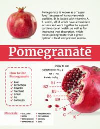 Pomegranate Fruits Infographic Template