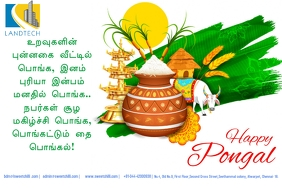 Pongal Greetings Poster template