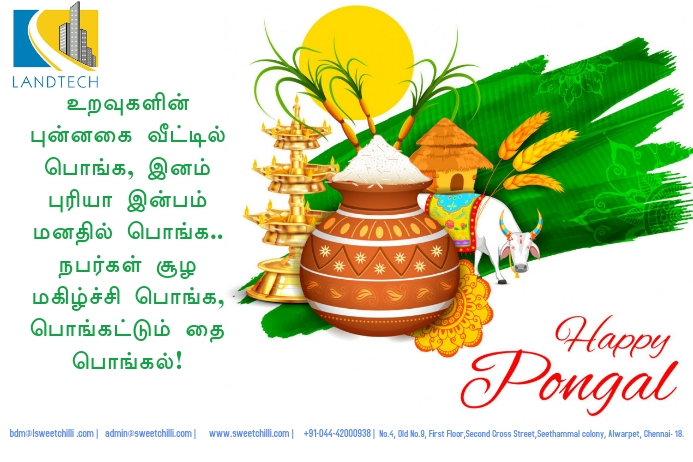 Pongal Greetings Póster template