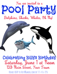 Pool Party with a Shark Whale Dolphin