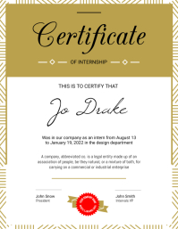 Portrait Internship Certificate Flyer (US Letter) template