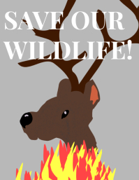 Poster on wildlife