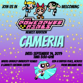 PowerPuff Girls Baby Shower Invite Instagram Post template