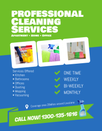Professional Cleaning Services Flyer Template