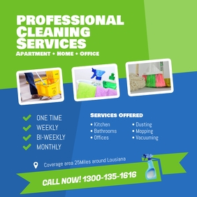 Professional Cleaning Services Instagram Social Post