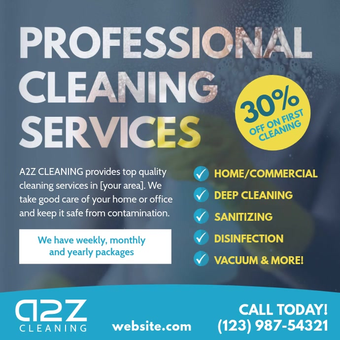 Professional Cleaning Services video advert Instagram Plasing template