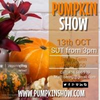 Pumpkin show1