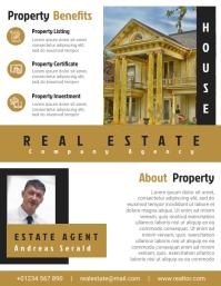 Real Estate Agent Flyer Template Design File
