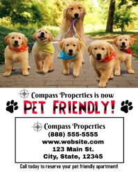 Real Estate Apartment Pet Dog Friendly