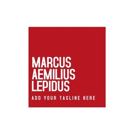 red and white modern elegant minimal logo