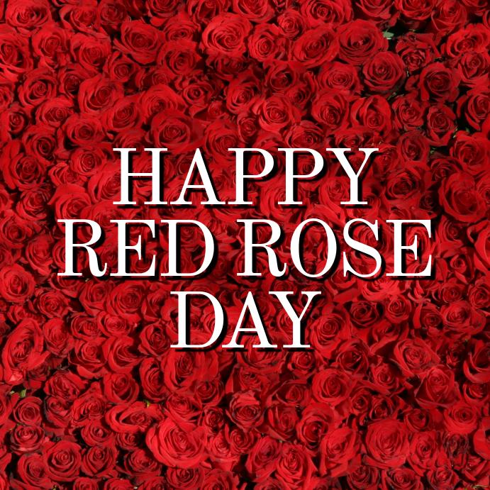 Red rose day Instagram-opslag template