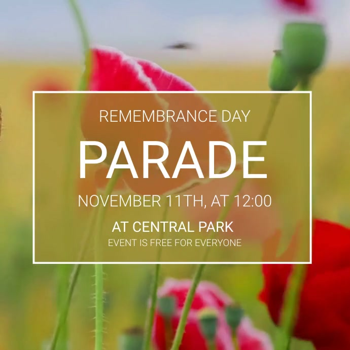 Remembrance Day parade video template Pos Instagram