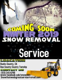 Removal Snow