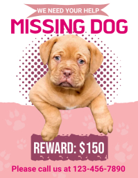 Rewarded Missing Dog Flyer Folder (US Letter) template
