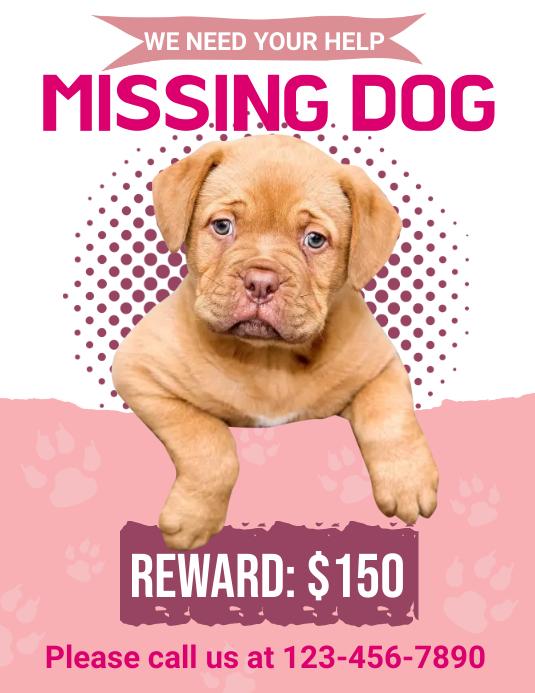 Rewarded Missing Dog Flyer template