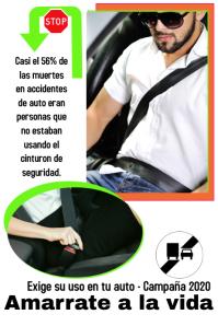 road safety/seatbelt/cinturon de seguridad