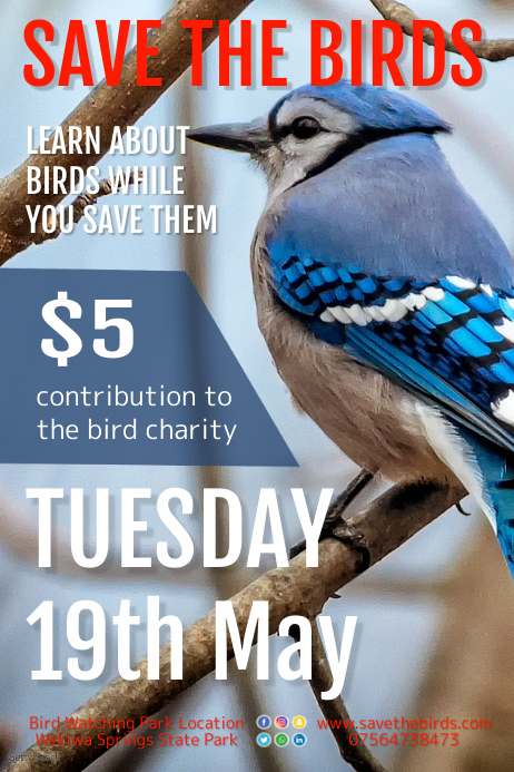 Save Our Birds Poster