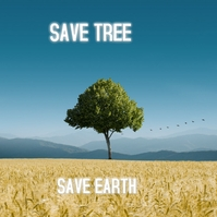 save tree album cover Albumhoes template