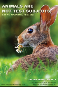 Say No to Animal Testing Awareness Poster