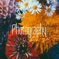 Script Photography Photo Logo Design Logotipo template