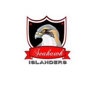Seahawks Logo Template